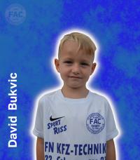 David-Bukvic.