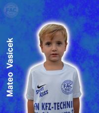 Mateo-Vasicek.